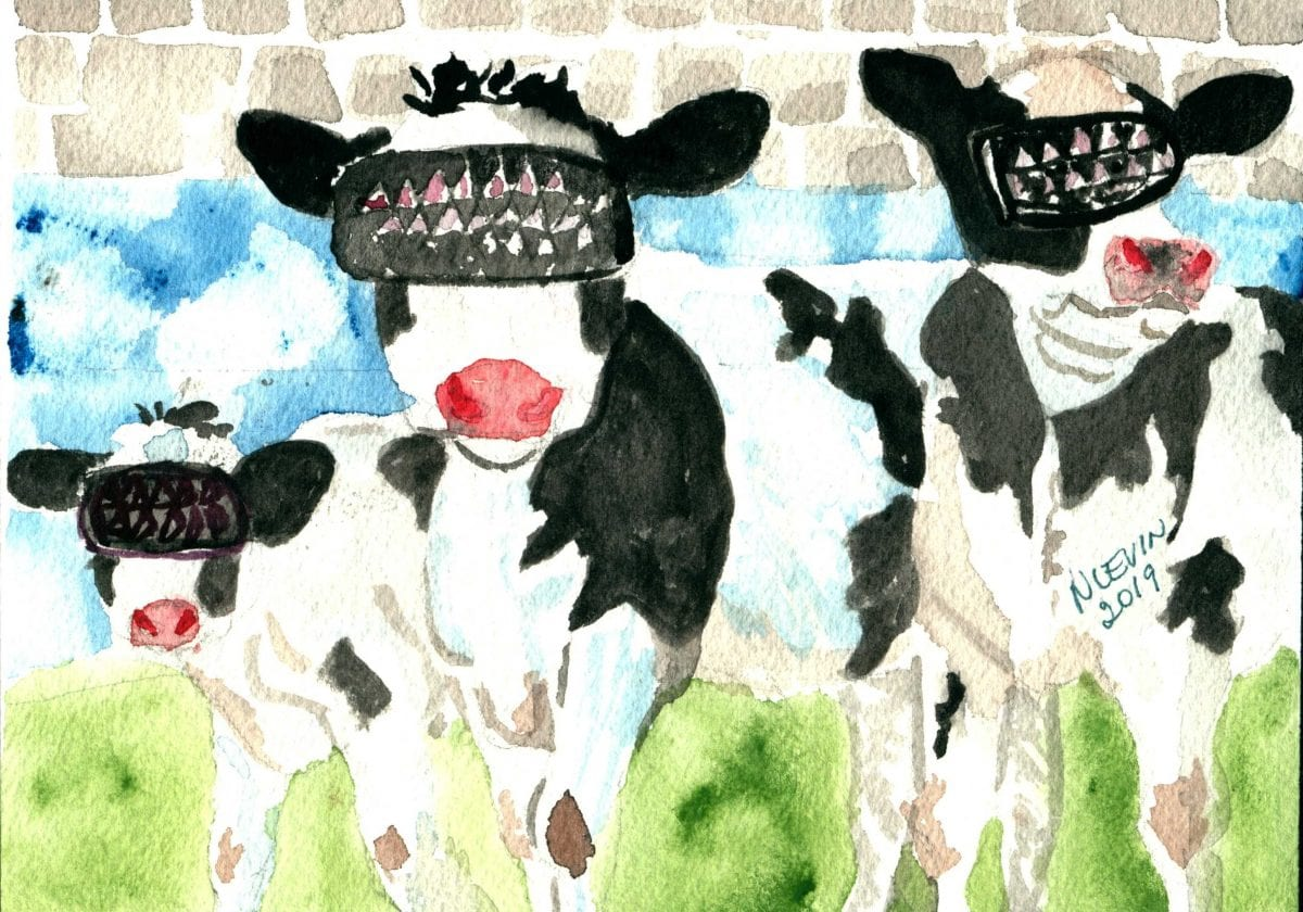 Cows wearing VR Goggles offer an interesting small business growth strategy